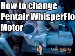 pool motor replacement pentair whisperflo