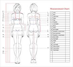 Woman Body Measurement Chart Scheme For Measurement Human Body