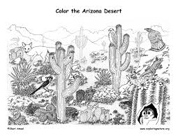 Printable Coloring Pictures Of Desert Animals Camouflage Coloring