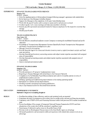 Leadership Resume Team Leader Finance Resume Samples Velvet Jobs 29