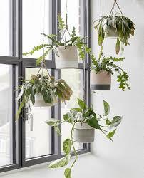 Hanging-baskets4