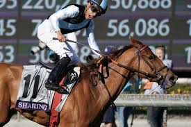 Breeders Cup Charts 2010 Eclipse Wins 1st Breeders Cup With A Brilliant Performance