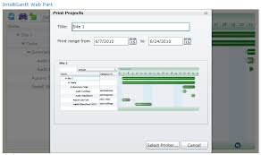 Intelligantt Print The Intelligantt Sharepoint Gantt Chart