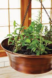Kitchen Gardening Indoor Kitchen Gardening Turn Your Home Into A Year Round