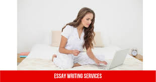 instructional designer resume ca sample resume training specialist custom essay writing service theandis a leading custom paper writing service that custom essay writing