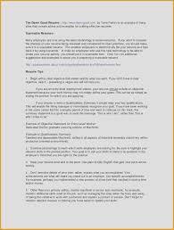 Customer Service Resume Objectives Customer Service Resume