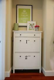 Ikea Shoe Storage Best 25 Slim Shoe Cabinet Ideas Only On Pinterest Diy Shoe