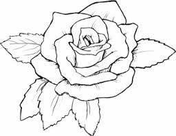Small Picture Coloring Pages Draw A Rose For Kids clarknews