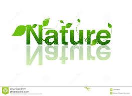 Word Of Nature Nature Ecology Logo Stock Illustration Illustration Of Icon 14646850