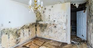 Home Aftermath Damage Services Llc