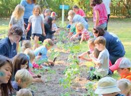 plant a school garden to fight hunger youth service america 9 11 national day of service september 11 2019