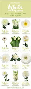 types of white flowers. essential white wedding flower guide: names, types + pics of flowers f