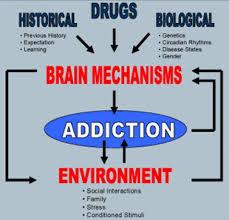 drug addiction essay << custom paper service drug addiction essay