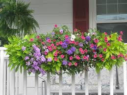 Small Picture Best 25 Deck railing planters ideas only on Pinterest Railing