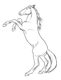 rearing horses drawings.  Rearing Rearing Horse Photo Drawing  Images For Horses Drawings Pinterest