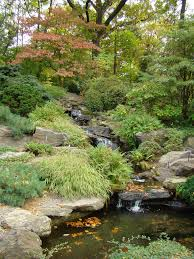 simple rock garden ideas photograph rock garden design ima