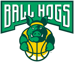 Image result for big3 ball hogs