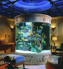 How To Decorate With An Aquarium Fish Tank Fish Tank Room Design