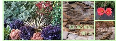 buck jones nursery plants sod