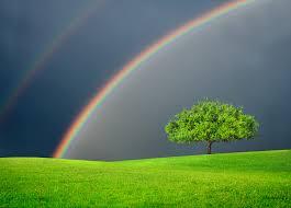 Afbeeldingsresultaat voor de regenboog