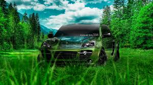 porsche cayenne crystal nature car