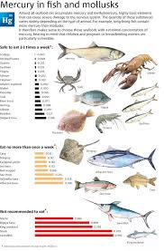 Mercury Levels In Fish And Mollusks Be Aware Of What Is In