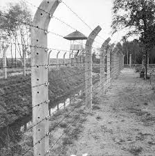 barbed wire fence concentration camp. Contemporary Concentration Vught Concentration Camp The Electrically Charged Barbed Wire Fence Around  Concentration Camp Near Hertogenbosch Throughout Barbed Wire Fence Camp E