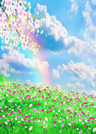 grass field background with flowers. 5x7FT Rainbow Clouds Sky Light Pink Flowers Branch Grass Field Custom Photo Studio Backdrop Background Vinyl With
