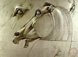 horse head sketch painting benjamin haydon horse head sketch art print
