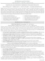 Executive Resume Formats Resume Sample Source