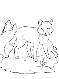 Small Picture Fox coloring pages Download and print fox coloring pages