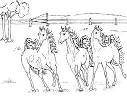 Small Picture Three horses roaming wild horse coloring pages BIG BANG FISH