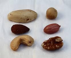 Nut Identification Chart Mixed Nuts Wikipedia