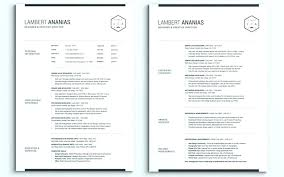 Resume 3 Pages - Acur.lunamedia.co