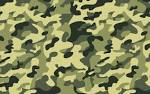 Images & Illustrations of camo