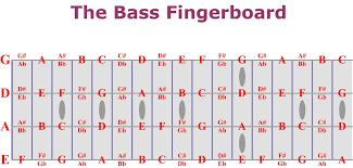 bass fretboard chart rh ademy com bass guitar fretboard map bass guitar fretboard layout