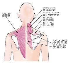 首 の 痛み ストレッチ