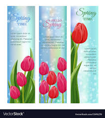 Spring Photo Cards Hello Spring Greeting Cards With Blooming Tulip