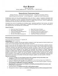 travel and tourism curriculum vitae cv samples job and resume 1275 x 1650