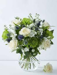 Flowers & <b>Plants</b> I <b>Plants</b> Online I M&S