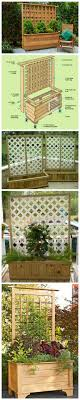 Patio Privacy Fence Best 25 Patio Privacy Ideas On Pinterest Backyard Privacy