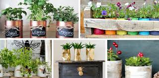 Five of the Best Tin Can Planters You Will Want To Make