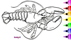 Small Picture American Blue Lobster Coloring Page for Kids Dinosaur Coloring