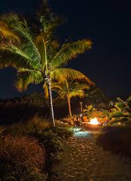 tropical outdoor lighting. ocean house resort islamorada fl craig reynolds landscape architecture tropical garden outdoor lighting d