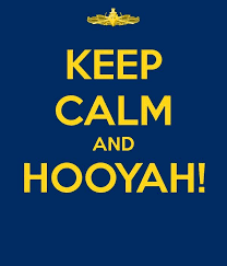 Hooyah Go Blue Go Navy Beat Army Michigan Go Blue