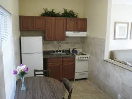 Apt Kitchen Accommodations