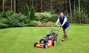Lawn Care Business Plan The Lawn Solutions