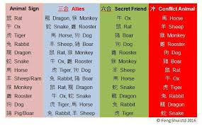 Tiger Love Compatibility Chart What They Do Not Tell You About Your Chinese Zodiac Animal