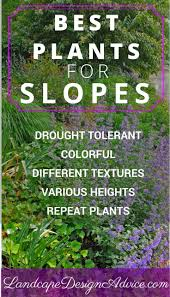 diy front yard landscaping tips. best landscaping ideas for backyard on pinterest diy outdoor and with a hill sloped yard landscaped front tips e