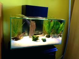 office fish. Office Fish Aquarium Tanks Home Design And Decor Source Best .